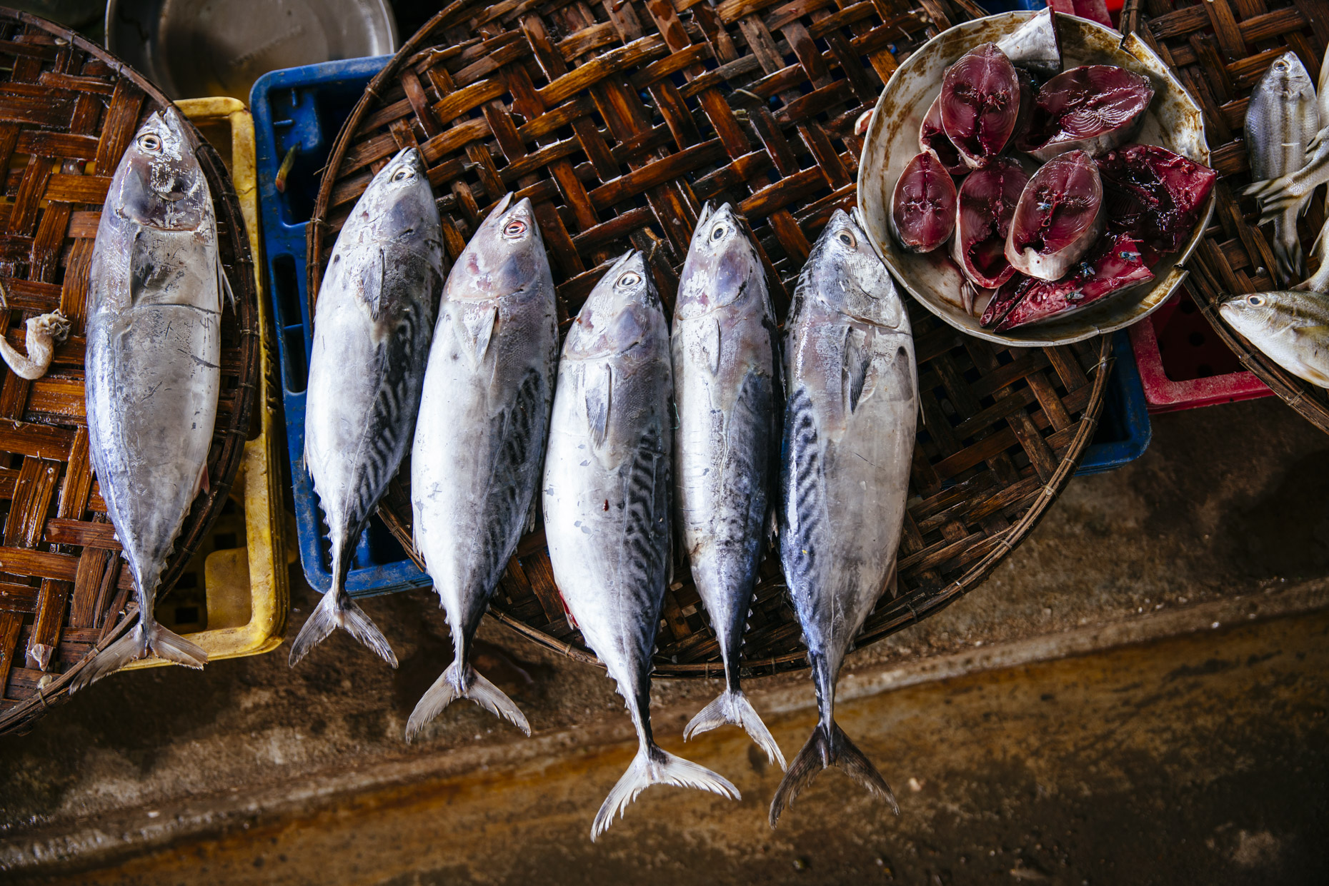 Baskets with freshly caught fish in outdoor market in Vietnam