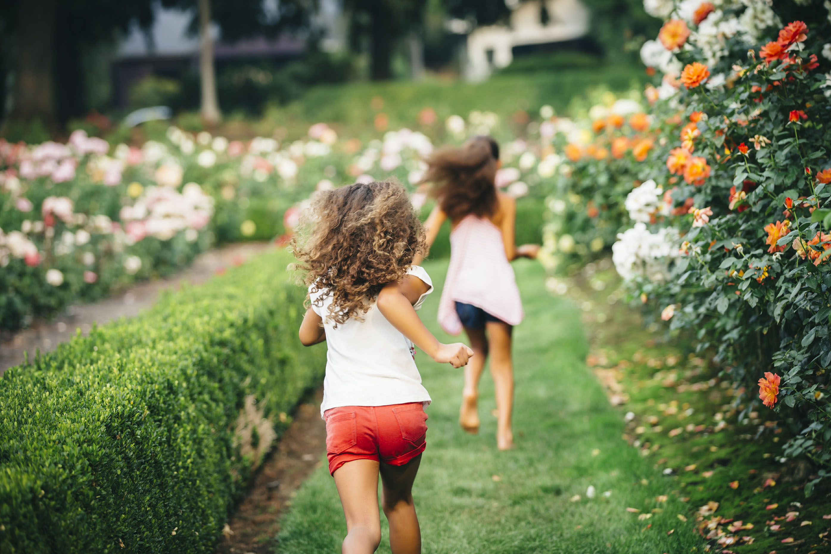 Inti St Clair photo of girls running through a rose garden