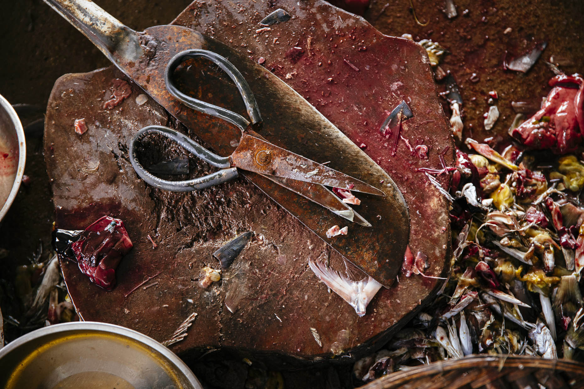 Rusted scissors and knife on block covered in fish blood and guts