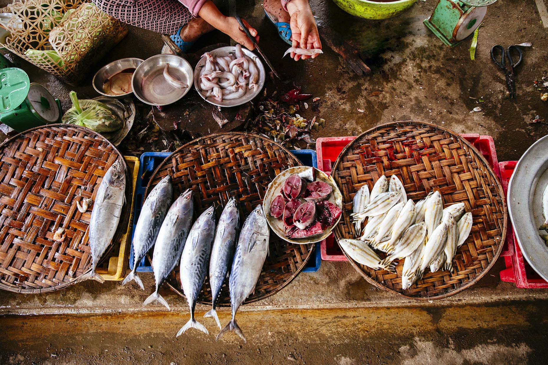 Woman-selling-fresh-fish-in-street-market-Inti-St-Clair-is201601150872
